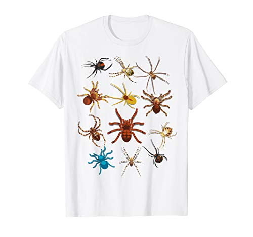 (Funny Spiders Shirt | Cute Halloween Scary Spiders Tee)