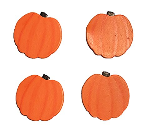 - Roeda Brighten Your Life 25007O Pumpkin Magnets Set of 4