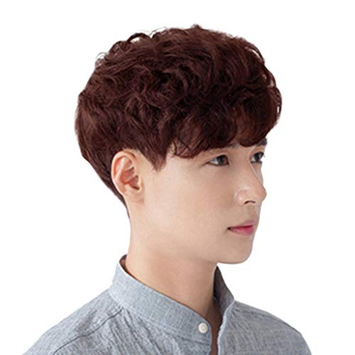 VICCKI Fashion Synthetic Short Wigs for Men Wig Man Male Brown Black Wig New (Black-C, Medium)