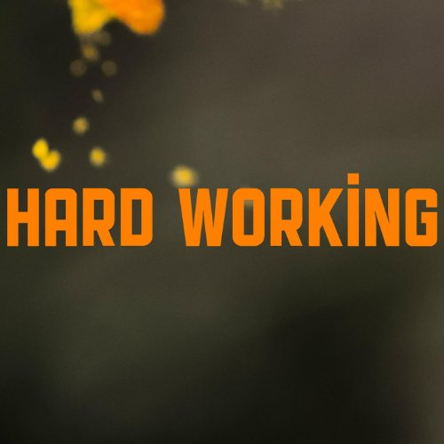 Dp On Hard Work: Hard Working By Envyload On Amazon Music