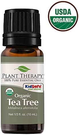 Plant Therapy Tea Tree Oil Organic (Melaleuca Essential Oil) 100% Pure, Natural, Therapeutic Grade 10 mL (1/3 oz)