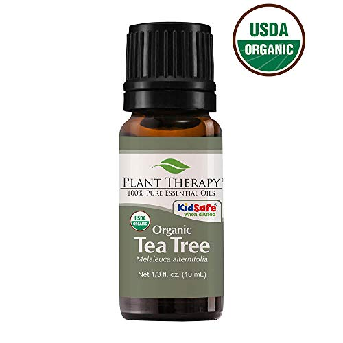 Plant Therapy Tea Tree Oil Organic (Melaleuca Essential Oil) | 100% Pure, Natural, Therapeutic Grade | 10 milliliter (1/3 ounce)