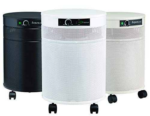 Airpura T600DLX Air Purifier for Heavy Tobacco & Cigar Smoke, Black, Anthracite V-Blend Carbon