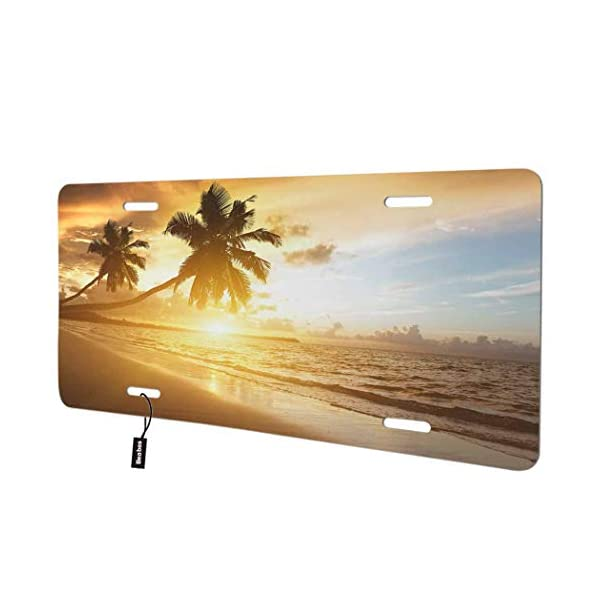 Beabes-Beach-Sunset-Palm-Tree-Front-License-Plate-Cover