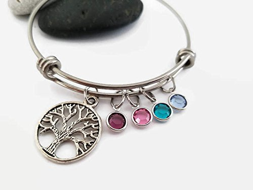 Birthstone Bracelet Silver Plated by Equlibrium - Adjustable Size - Gift Boxed (7 July - Ruby) owTei4PyY