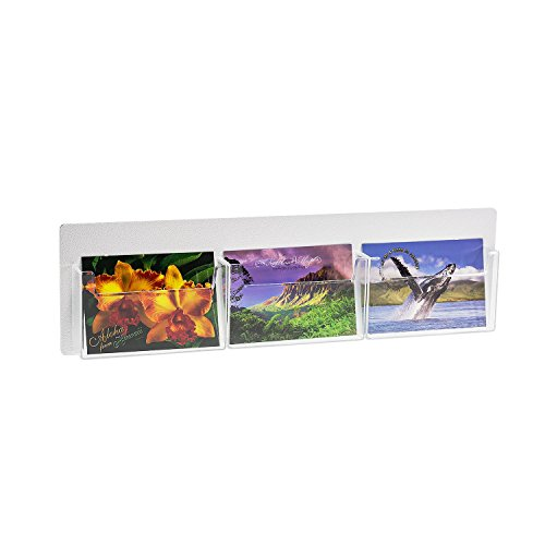 Source One 3 Pocket Deluxe Clear Postcard Holder Display Wall Mount (Display Postcard Holder)
