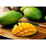 AMYHY Fruit Puzzle Lemon Jigsaw Puzzle, Restaurant Decoration, 300/500/1000/1500/2000/3000 Pieces Jigsaws Puzzles, Games Toys Birthday Gift (Size : 1500pieces)
