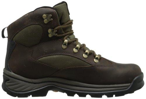 Timberland Men's Chocorua Gore-Tex Hiker
