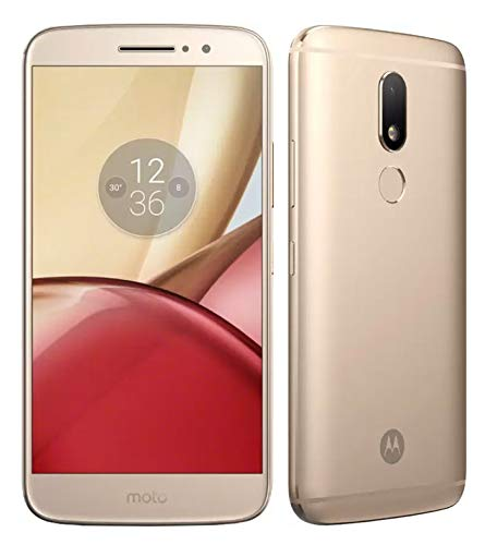 Motorola Moto M  32  GB    Gold