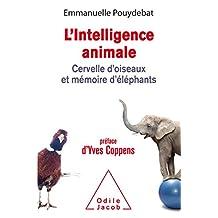 INTELLIGENCE ANIMALE (L')