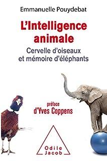 L'Intelligence animale : cervelle d'oiseaux et mémoire d'éléphants, Pouydebat, Emmanuelle