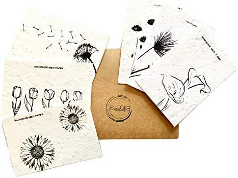 6 Biglietti con Semi Cards piantabili con semi di fiori vari 6 Diversi Design 1 Eco Pen