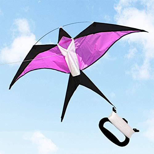B&MF Portable Kites, Colorful Swallow-Shaped Kites Three-Dimensional Kites Traveling Kites Flying Toy, 130 70 cm,G