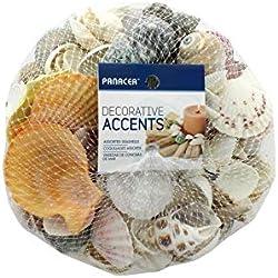 Panacea Floral Supply Seashells 2LB Bag Assorted