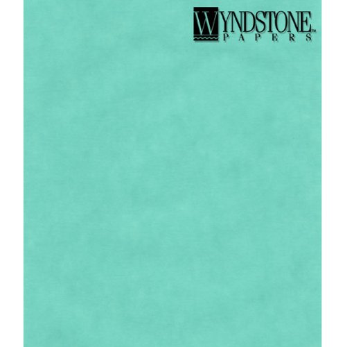 Translucent Colored Vellum- Turquoise 19x25 Inch Sheet