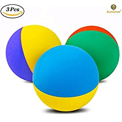 "3 Rubber Dog Balls (2.4"") by SunGrow - Recommended by Veterinarians, trainers & Pet enthusiasts for Chewing Therapy - BPA Free 100% natural rubber - Float in pools - Work with automatic ball throwers"