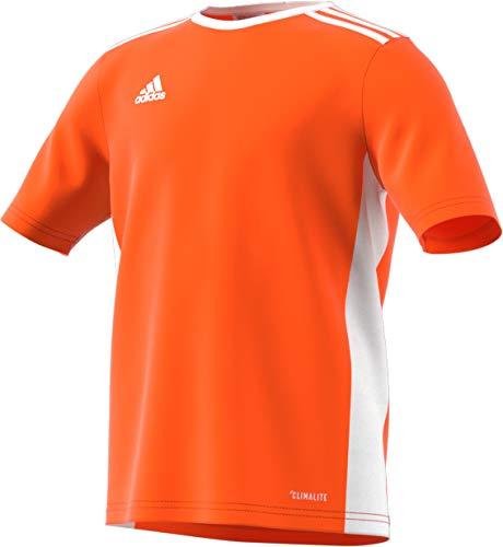 adidas Entrada 18 Jersey, Orange/White, Medium