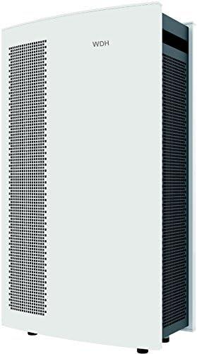WDH Purificador de aire H6 (250 m3/h): Amazon.es: Bricolaje y herramientas