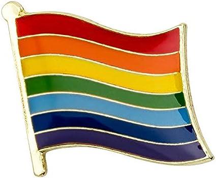 Pin de Solapa Bandera del Arcoiris LGTBI: Amazon.es: Ropa y accesorios