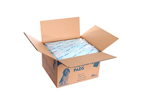 All-Absorb 200 Count Bulk Packaging Training Pads, 22 x 23