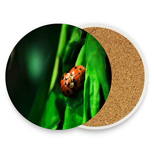 (Coasters for Drinks,Two Mating Seven-Spotted Ladybugs Ceramic Round Cork Trivet Heat Resistant Hot Pads Table Cup Mat Coaster-Set of 4 Pieces)
