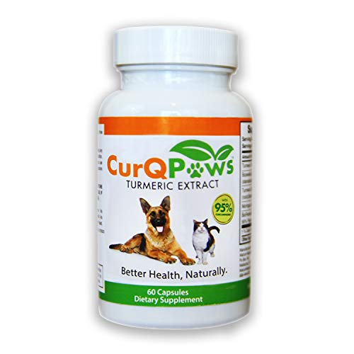 Antioxidant Naturally 60 Capsules - CurQPaws, Trial Offer Save 50%. Made of: Turmeric, Curcumin 95% Plus Bioperine, Safe Natural People Ingredients, Shown to Reduce Joint Inflammation and Pain (1 time Purchase Only)