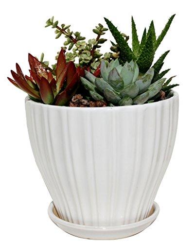 flower pots decorative - 3