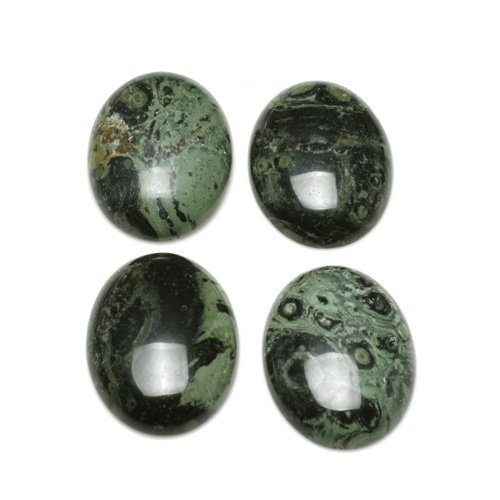 2 x Green Kambaba Jasper 13 x 18mm Oval-Shaped Flat-Backed Cabochon - (CA16633-4) - Charming Beads