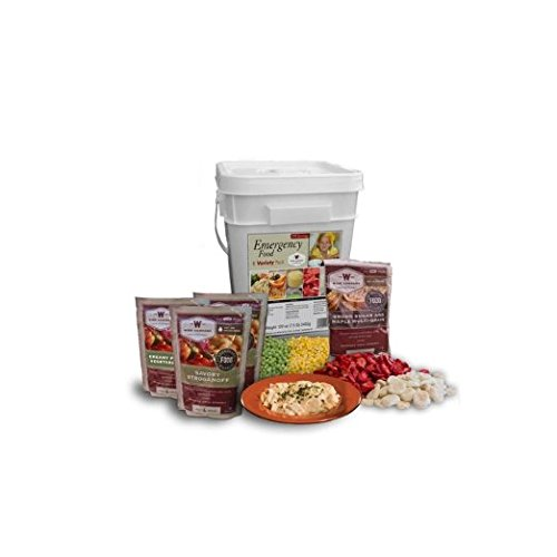 Wise-Company-Emergency-Food-Variety-Pack-104-Serving