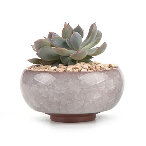 Grey Ceramic Mini Succulent Planter with Crystallised Finish