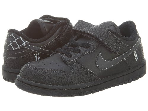 NIKE Little Dunk Low (Td) Toddlers Style 311535 (Nike Toddler Dunk)