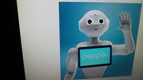 pepper the robot - 1