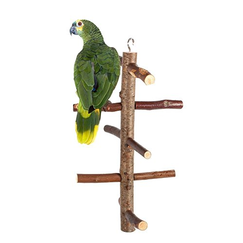 Cage Stands Hanging - Yosoo Parrot Birds Perches Paw Grinding Toy Cage Stand Toy Hanging Wooden Activity Branches Climbing Stairs For Budgies Canaries Cockatiels Cockatoo Parakeet