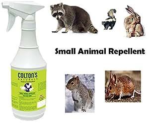 Amazon.com : Colton's Naturals Small Animal Spray