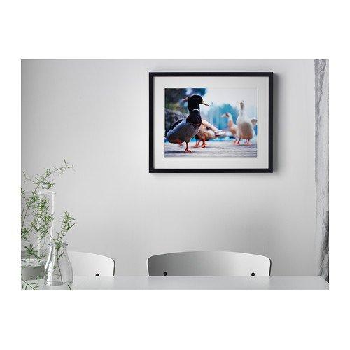 Amazon.com - Ikea Ribba Frame in Black 16\