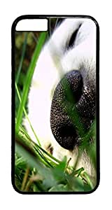 Sleeping Puppy Animal PC Case Cover for iphone 6 Plus 5.5inch - Black