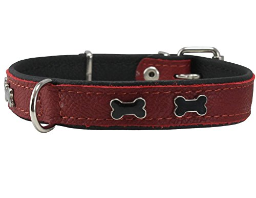 Genuine Red Leather Metal Bone Studs Soft Black Leather Padded Dog Collar 3/4