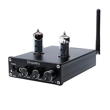 Amazon.com: Dilvpoetry R50 6J4 Amplificador de Tubo HiFi ...