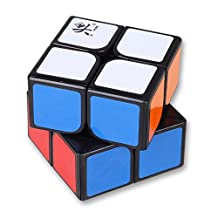 dayan ZhanChi 2x2x2 Brain Teaser Speed Cube Puzzle Black 50mm
