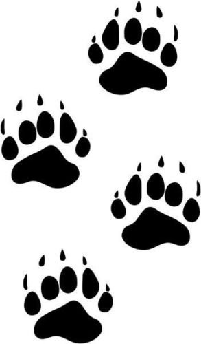 - Black Bear Paw Prints Hunting Sportsman Car Truck Windows Decor Decal Sticker - Die cut vinyl decal for windows, cars, trucks, tool boxes, laptops, MacBook - virtually any hard, smooth surface