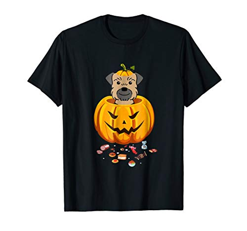 Funny Border Terrier Pumpkin Face Halloween Costume