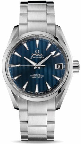 Omega Aqua Terra Mens Watch 231.10.39.21.03.001
