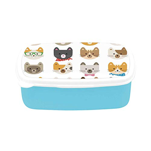 Kids Simple Plastic Lunch Containers,Cats Costume with Glasses Bow Tie Bandanna Cartoon Art Craft Pattern Print Pets Animal Lovers Print Decorative for home,7.09