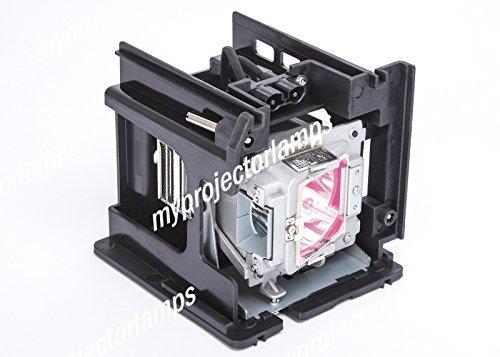 交換用プロジェクターランプ オプトマ BL-FU310A, PM484-2401 B00PB4XGUQ