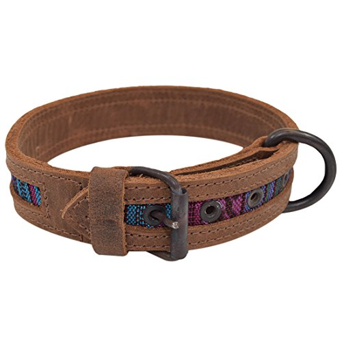 Rustic Mayan Dog Collar For Small Size Dog (10 - 12.5 Inches) Handmade by Hide & Drink :: Tropical Blue