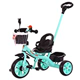 Bell Adult Tricycles Review and Comparison