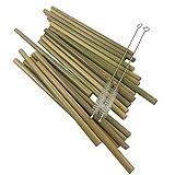 Autek 20 Pc Green Bamboo Natural Straw Environmental protection Adults Kid + 2 brushes