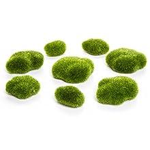 Darice Green Moss Rocks, None, 8 Piece