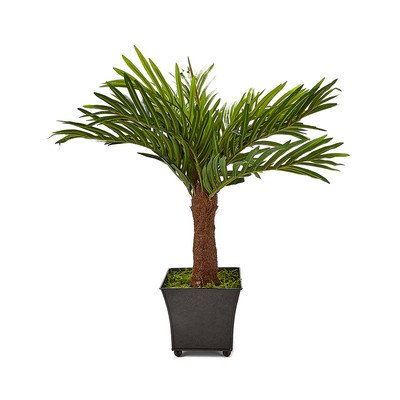 Wholesale Silk Floral 24 Areca Palm in Black Metal Container (5.5-inchH x 6-inch W) Greenery Green -  Silk Flower Depot, PRE0550