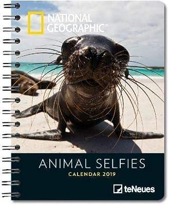 Animal selfies - Libro Calendario Delux 2019 - Libreta A5 ...